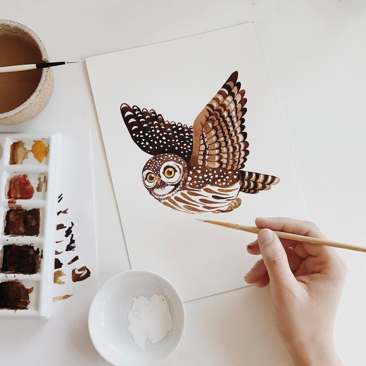Oana Befort (@oanabefort) A lovely little Pygmy Owl for a lovely project. These are some of the tiniest owls in the world, measuring around 6-7 inches in length. I think they are the cutest.