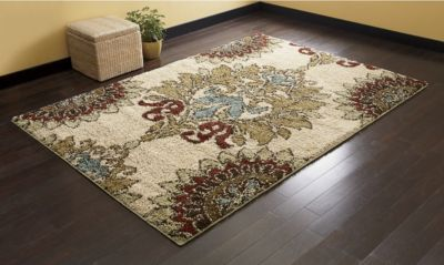 """Jacqueline Shag rug found in """" Through the Country Door """" catalog      7'10""""X10'10""""     389.95 $"""