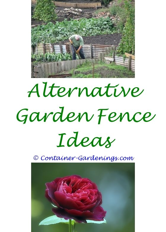 603 best Backyard Garden Ideas images on Pinterest