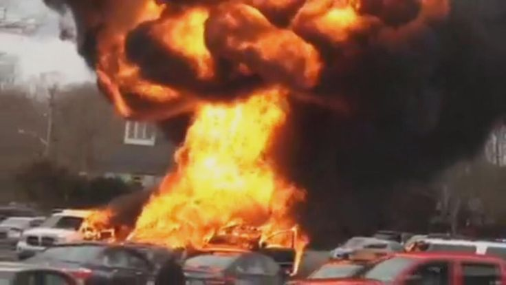 A line of cars went up in flames in a parking lot on Long Island after a man tried to kill bedbugs in car.