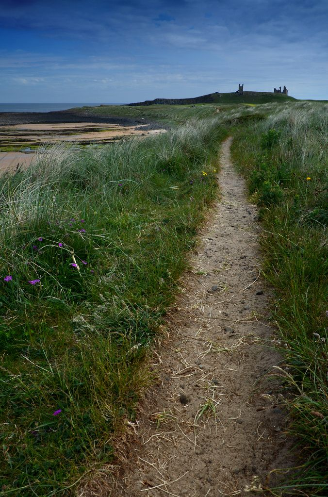 Looking along the coastal footpath from Embleton Bay towards the ruins of Dunstanburgh Castle, Northumberland, England by DM Allan