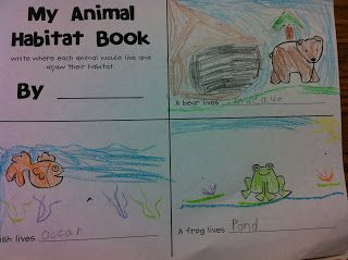 The Adventures of a First Grade Teacher: All about Animals