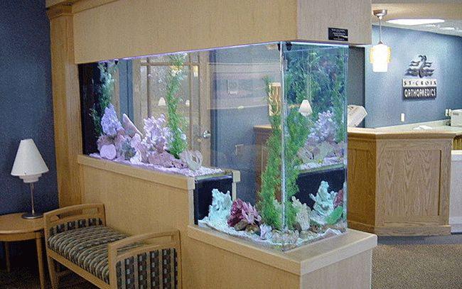 17 best images about aquariums on pinterest studios for Custom fish tanks
