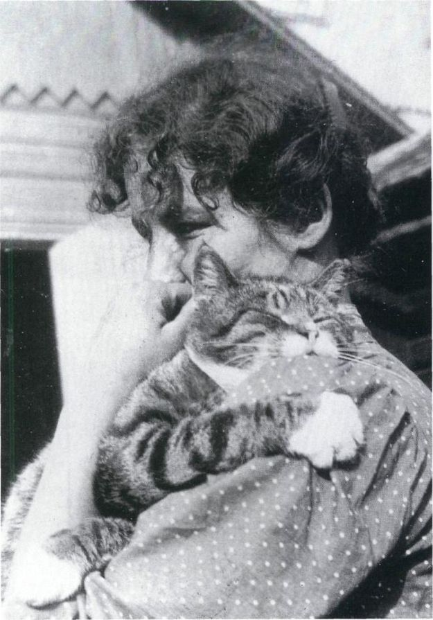 """Of all our sunny world  I wish only for a garden sofa  where a cat is sunning itself.    There I should sit  with a letter at my breast,  a single small letter.  That is what my dream looks like.""    - Edith Södergran, A Wish, translated by David McDuff"