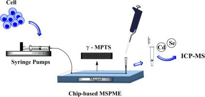 #Talanta Chip-based magnetic solid phase microextraction coupled with ICP-MS for the determination of Cd and Se in HepG2 cells incubated…