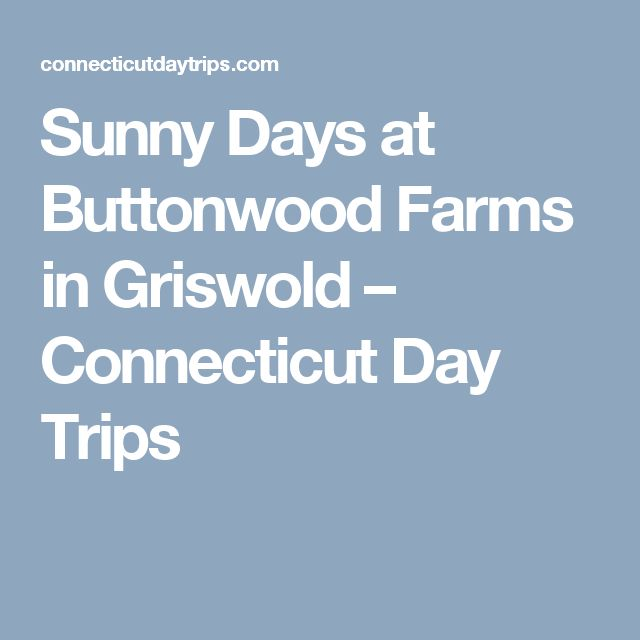 Sunny Days at Buttonwood Farms in Griswold – Connecticut Day Trips