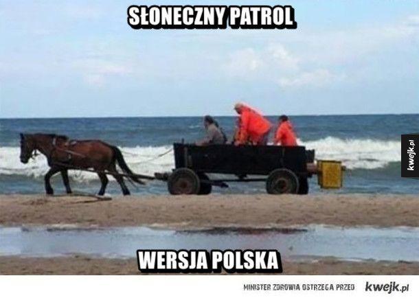 Słoneczny patrol #kwejk #humor