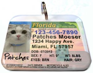 This is so cute for a dog or cat! florida-drivers-license-personalized-pet-id-tags-double-sided-for-dog-and-cat. ID4pet.com