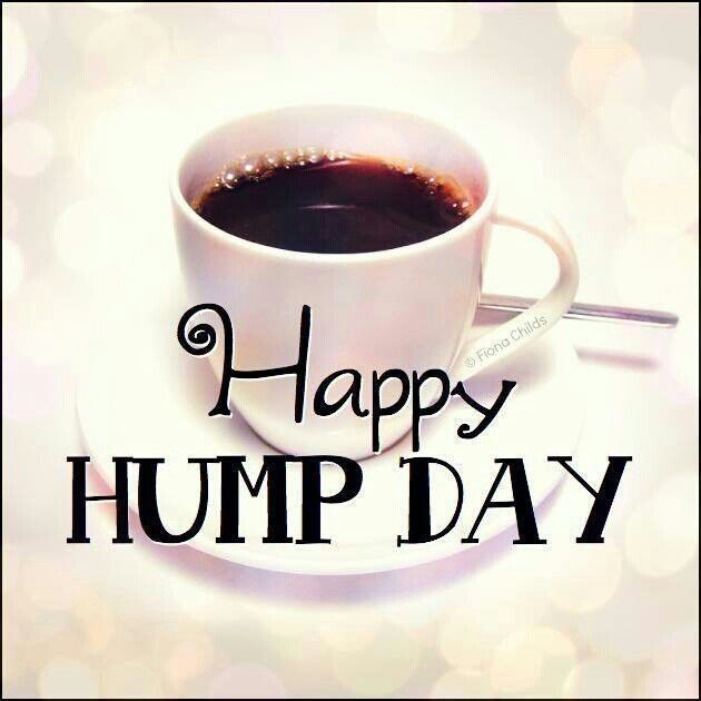 Happy Hump Day wednesday hump day wednesday quotes happy wednesday happy hump…