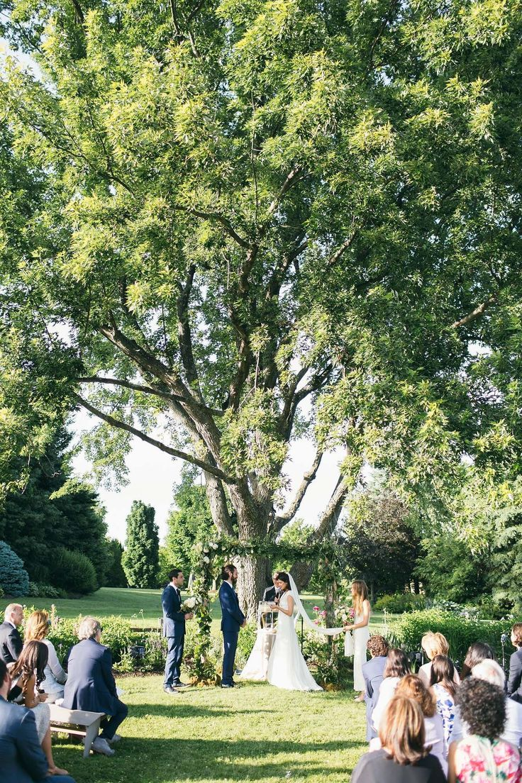 This wedding took place under one of the biggest, oldest trees on the property