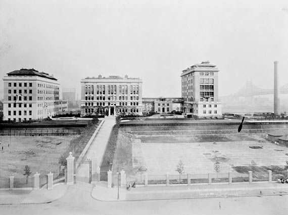 Image result for rockefeller university 1916