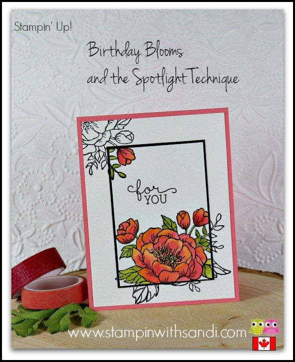 The Spotlight Technique with Birthday Blooms by Stampin Up