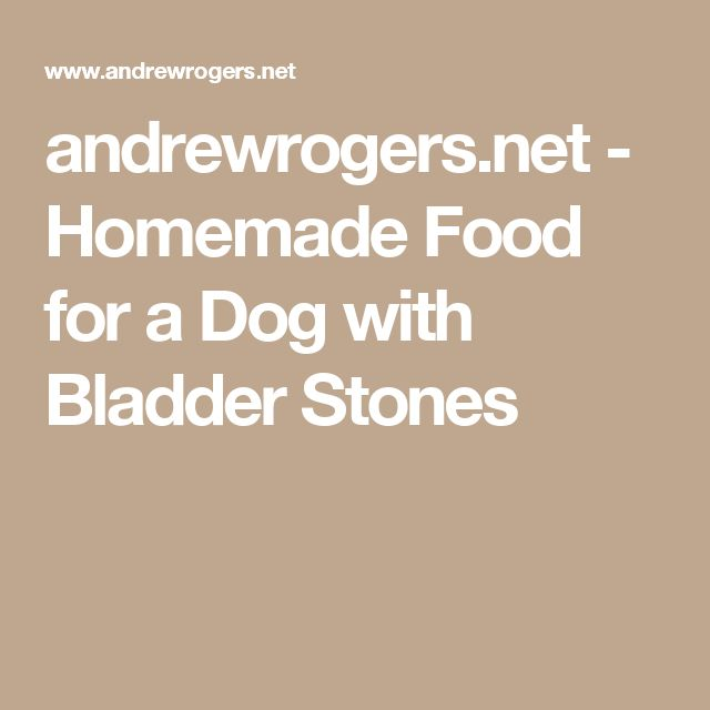 andrewrogers.net - Homemade Food for a Dog with Bladder Stones