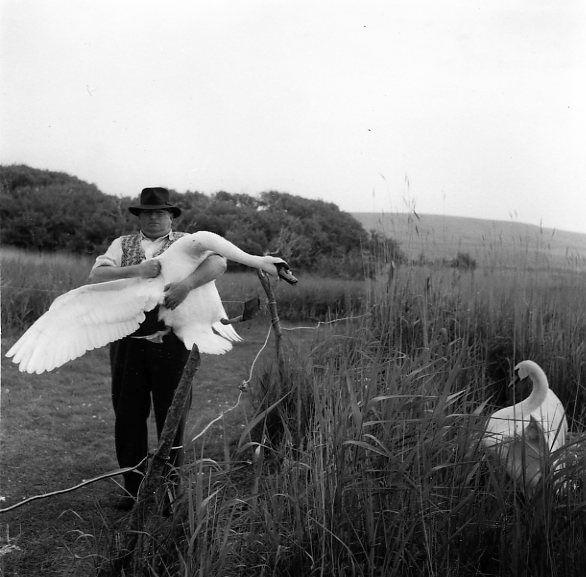 Un enlèvement à Abbotsbury 1961 |¤ Robert Doisneau | 27 mai 2015 | Atelier Robert Doisneau | Site officiel