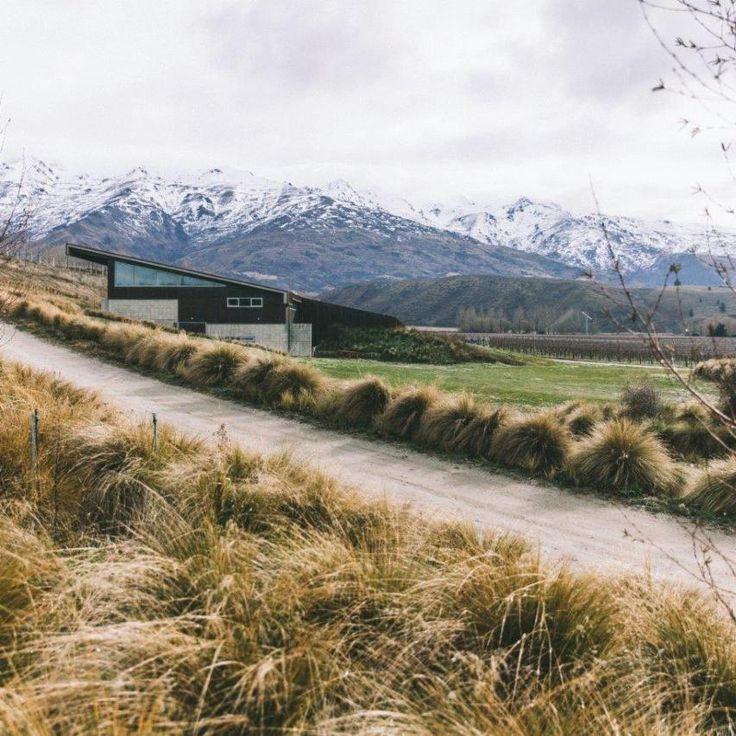 The Winery sits beneath the Pisa mountain range, Central Otago, New Zealand