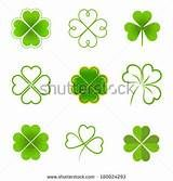 Three leaf clover Stock Photos, Images, & Pictures | Shutterstock