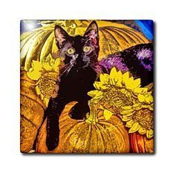 3dRose LLC Halloween Cat 8-Inch Ceramic Tile by 3dRose. $17.99. Clean with mild detergent. Construction grade floor installation not recommended. Dimensions: 8-inch w by 8-inch h by 1/4-inch d. Image applied to the top surface. High gloss finish. Halloween cat tile is great for a backsplash, countertop or as an accent. This commercial quality construction grade tile has a high gloss finish. The image is applied to the top surface and can be cleaned with a mild detergent.