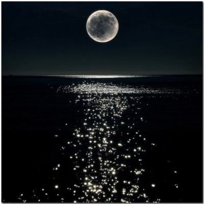 Moonlit night: Moon, The Ocean, Fullmoon, Profile Pictures, Full Moon, Summer Night, Night Sky, Moon Lights, The Moon