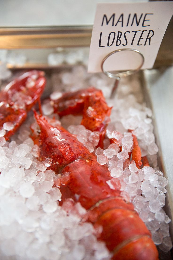 149 best where to eat maine lobster images on pinterest lobsters