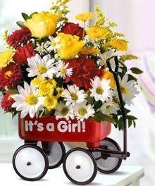 New Baby Flowers - Louisville Kentucky | Nanz and Kraft Florists