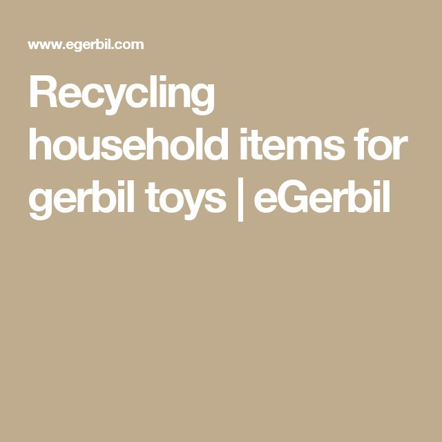 Recycling household items for gerbil toys | eGerbil