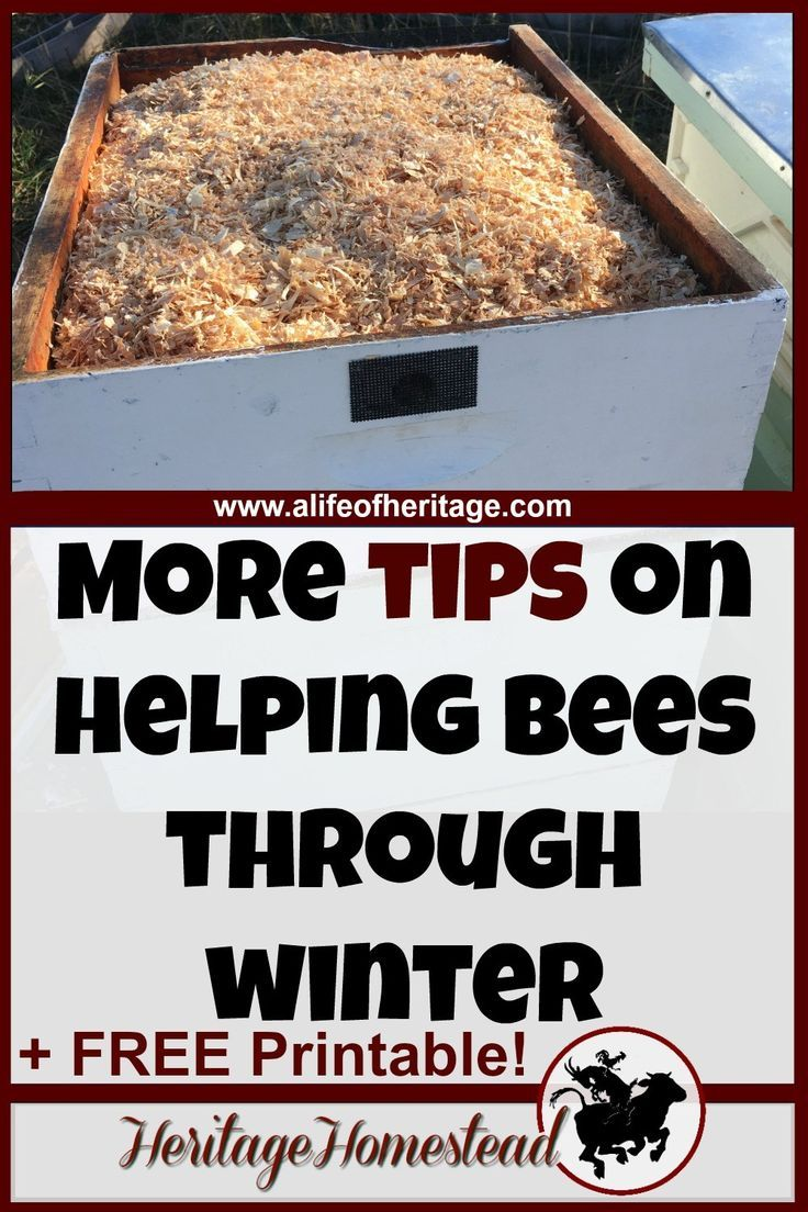 How to make a moisture quilt for a langstroth hive honey - Bees In Winter Moisture Quilt Candy Board And Insulation