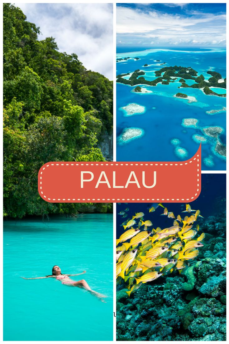 Things to Do in Palau: 11 Top Experiences Not to Miss in Palau, Micronesia + PHOTOS