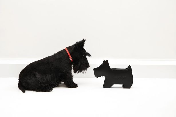 Pose with a Radley Scottie dog and enjoy treats at McArthurGlen outlet this Friday #MYRADLEYCHRISTMAS