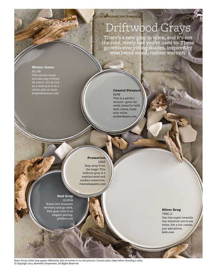 Neutral Paint Color Scheme Gray Warm Tones Interior