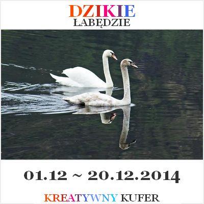 Wyzwanie Tematyczne - Baśń: Dzikie Łabędzie | Kreatywny Kufer http://kreatywnykufer.blogspot.com/2014/12/wyzwanie-tematyczne-basn-dzikie-abedzie.html