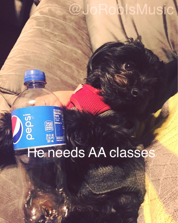 Little king has to drink 2 of these a day! @pepsi he needs help what can we do 😎he wants a lifetime supply    #pepsi #limitededition #collector #vintagestyle #cola #кокакола #кола #пепси #drink #drinks #soda #followers #likeme