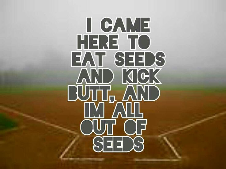 All out of seeds
