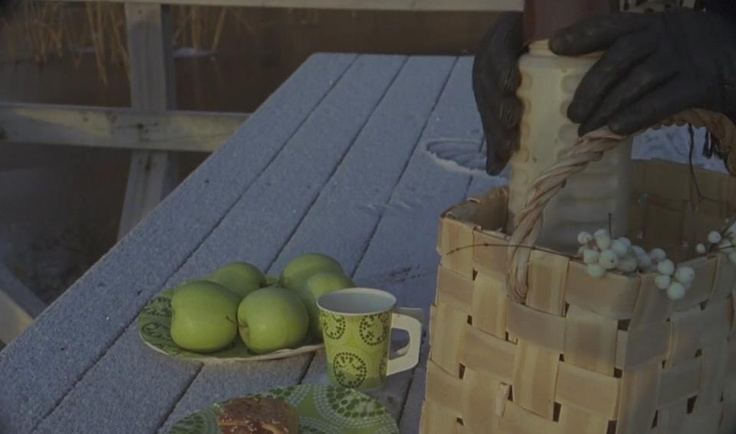 Picnics in Finland. Green Apples and basket.