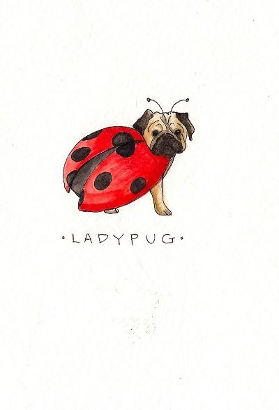 Ladypug!    This would be a cute tattoo