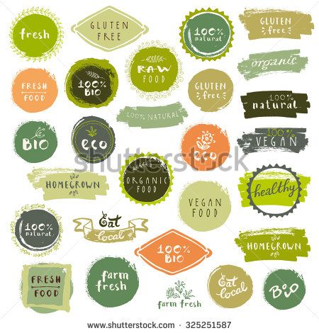 Retro Set Of Bio Organic Gluten Free Eco Healthy Food Labels Hand Drawn Logo Templates With Floral And Vintage Elements For Restaurant Menu Or