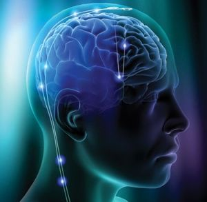 10 Unbelievable Facts About Human Brain That Everyone Should Know. - Unbelievable Facts