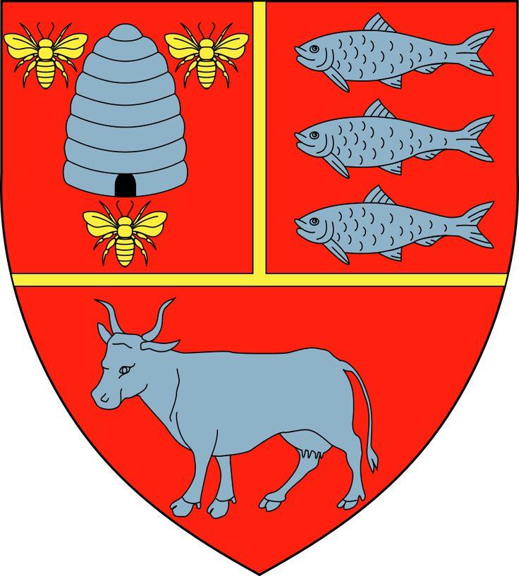 Vaslui County, Development Region: Nord-Est, Romania (Area 5,318 Km²) #Vaslui #NordEst #Romania (L18041)