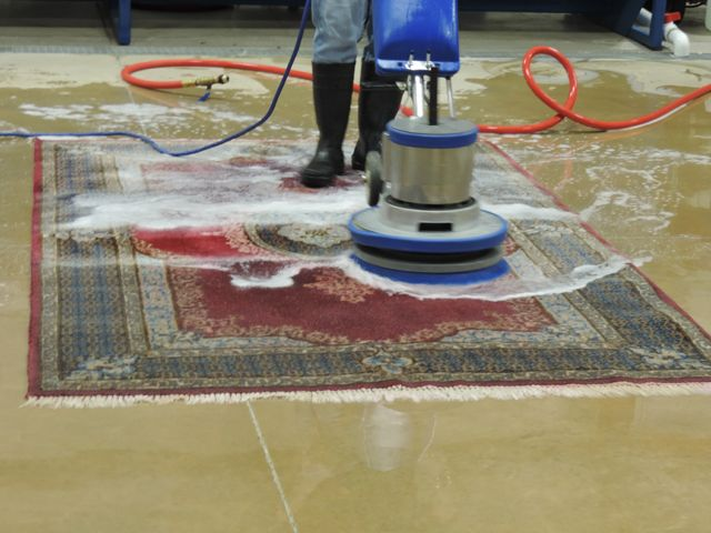 Oriental Rug Cleaning The Village: Where do Molds Come From