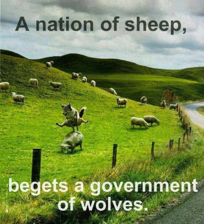 A nation of sheep begets a government of wolves.Sheep Dogs, Funny Pics, Funny Humor, Funny Pictures, Lakes District, Funny Stuff, Wolves, Funny Photos, Animal