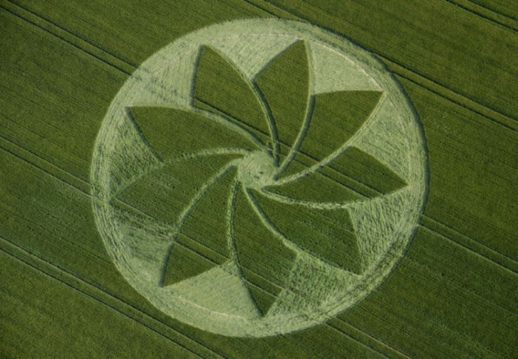 http://one-vibration.com/group/cropcirclesinovation/forum/topics/rop-circle-at-hoden-nr-evesham-worcestershire-united-kingdom-repo