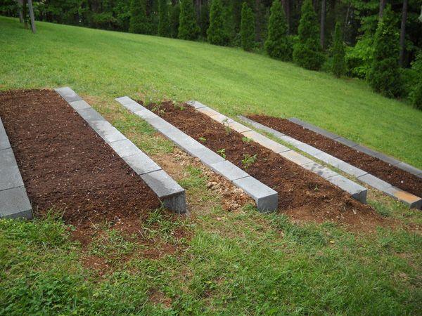 Gardening on a hill gardening Pinterest Gardening