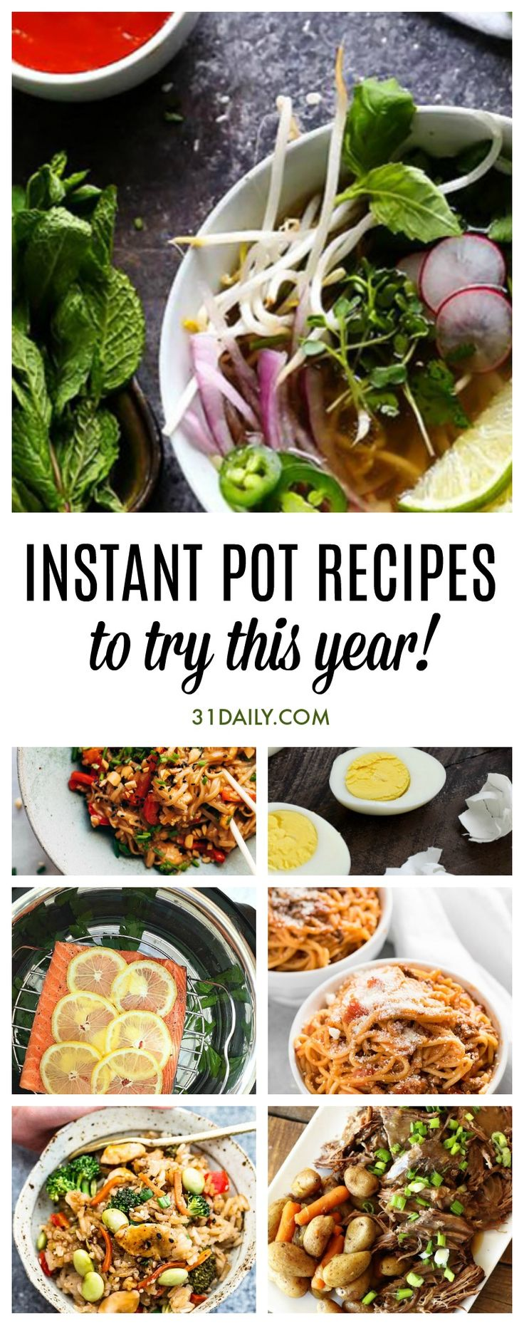 Instant Pot Recipes to Try This Year | 31Daily.com