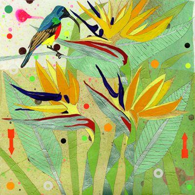 Bird of Paradise and Sunbird -Sarah Beetson