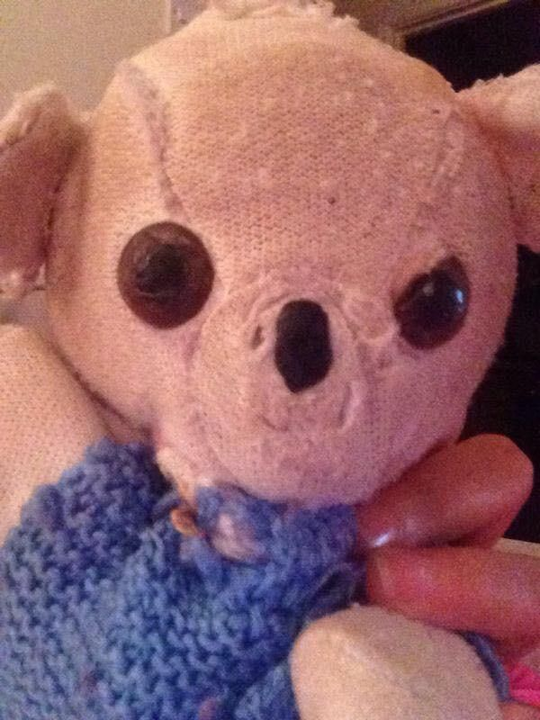 Lost on 29 May. 2016 @ South cerney, Cirencester, GL7 5FP. My daughter has lost her beloved teddy. He is small, very fragile due to his age and many repairs! He has black bead eyes, one slightly broken. A chipped bead nose. No fur left on his body. He is v... Visit: https://whiteboomerang.com/lostteddy/msg/d37822 (Posted by Jane Warner on 02 Jun. 2016)