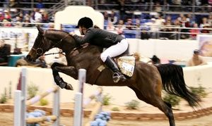 Groupon - Scottsdale Arabian Horse Show for Two or Four from the Arabian Horse Association (Up to 53% Off) in North Scottsdale. Groupon deal price: $11