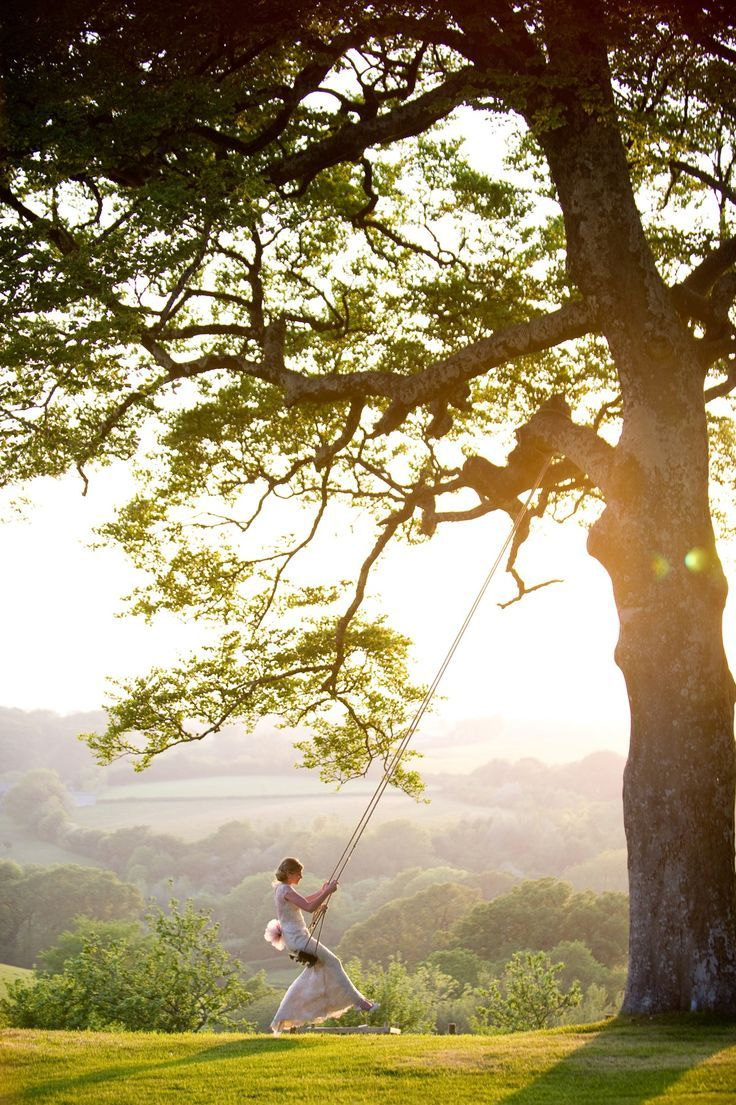 дерево качели природа картинки применяем