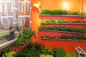 Bildresultat för odla grönsaker balkong