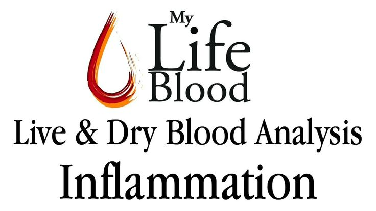 Live and Dry Blood Analysis - Inflammation - My Life Blood - Maria Waldock