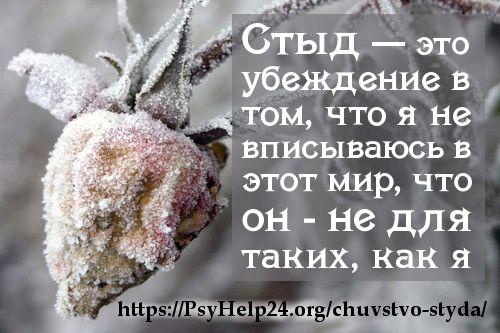 Чувство стыда - одно из самых токсичных чувств. https://psyhelp24.org/chuvstvo-styda/
