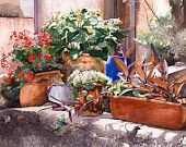 Selection of flowerpots on a wall, Watercolour Giclée print